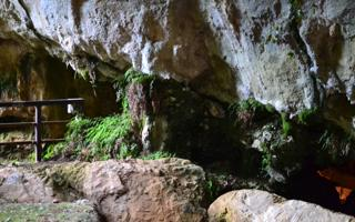 Withness from Paleolithic. Things to do in Papasidero
