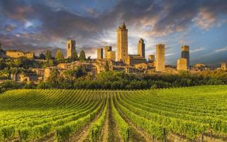 Medieval Villages & Organic Wine Tasting. Cosa fare a Firenze