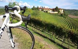 Langhe on bike (easy). Things to do in Bra