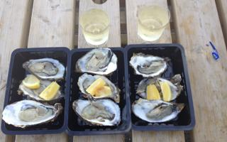 Rome: Aperitif and Oysters in Fleming area. Things to do in Roma