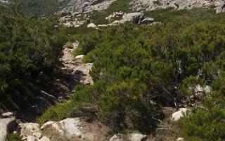 Hiking in the peaks of Limbara Mountain in Sardinia. Things to do in Tempio (Zona Industriale D'interesse