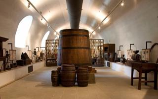 Rufina, Florence: The museum of vine and wine. Things to do in Rufina