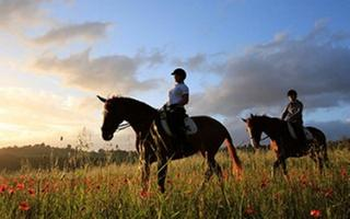 Horseback riding in the countryside of Umbria. Things to do in Valfabbrica