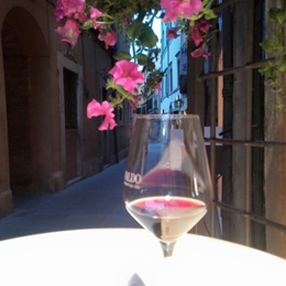"Walking tour in the old city centre with a drink at the ""Terrace"". Things to do in Umbertide"
