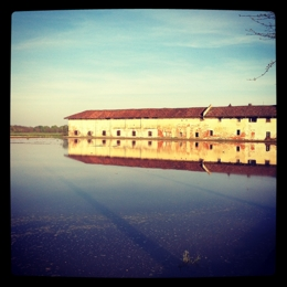 In a farm in the flooded rice fields. Things to do in Vercelli