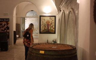 WINE TASTING. Things to do in Guagnano